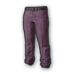 Battlegrounds Slacks purple